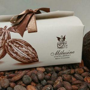 Les ballotins de chocolat